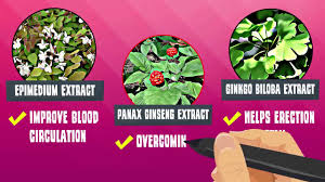 hammer of thor ingredients 63 915 969 5369 whats app youtube