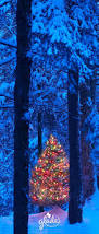 best 25 blue christmas lights ideas on pinterest blue christmas