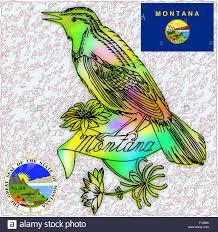 Montana State Flag Montanakids State Bird Western Meadowlark Montana State Bird