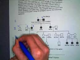 genetics practice problems pedigree tables pedigree instructions youtube