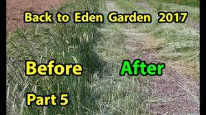 no till b2e organic vegetable gardening method for beginners 101