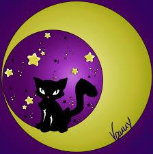 cat on the moon by kleine nachteule on deviantart