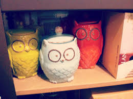 owl canisters for the kitchen ten june kirkland u0027s window shopping finds