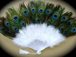 peacock fan éventail plume de paon et oie diversen peacock