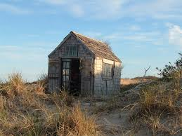 modern shacks google search shed vintage pinterest dune