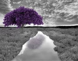 Grey And White Wall Decor Purple Gray Tree Landscape Wall Art Home By Littlepiephotoart