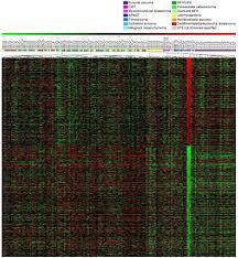 diagnostic and prognostic gene expression signatures in 177 soft