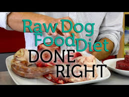 how to make a raw food diet for dogs with pictures wikihow