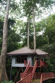 Real Treehouse Stay Overnight In The Beautiful Treehouses At The Rock And