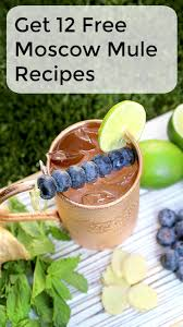 216 best moscow mule recipes images on pinterest gov u0027t mule
