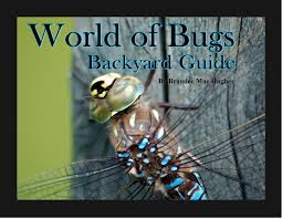 blog bula bug nature fun and education page 2