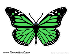 green butterfly tim u0027s printables