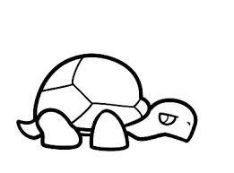 gambar sketsa kura kura paling keren lucu dan simple gambar mania