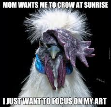 Rooster Meme - emo rooster doesn t need your judgment by biglerm meme center