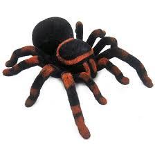 halloween wind up toys online get cheap halloween certificates aliexpress com alibaba