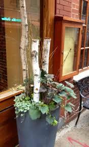 Front Porch Planter Ideas by 42 Best Dish Gardens Planter Images On Pinterest Plants