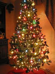 tree decorating with colored lights white lights or