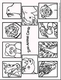 alligator coloring pages zoo coloring pages coloring234