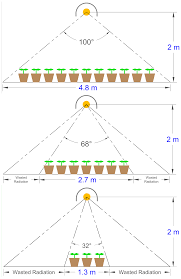 economic analysis of greenhouse lighting light emitting diodes vs