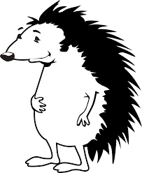hedgehog black white line art coloring book colouring august 2011