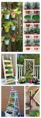 14 diy vertical gardens you u0027ll want to copy right now plant