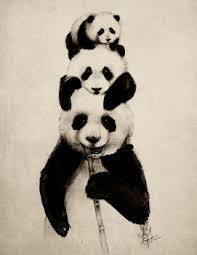 panda explore panda on deviantart