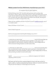 video consent form usability test report for inno venture video