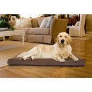 Tempur Pedic Dog Bed Memory Foam Dog Bed