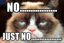 No Just No Meme - no just no grumpy cat