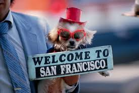 volunteer thanksgiving san francisco plan a san francisco trip use these 12 easy steps