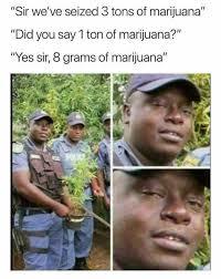 Marijuana Meme - dopl3r com memes sir weve seized 3 tons of marijuana did you