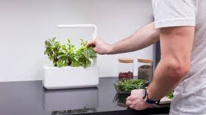 Click And Grow Amazon Smart Garden 3 By Click U0026 Grow Indiegogo