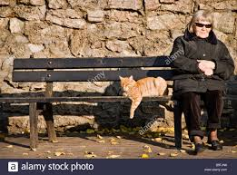 woman and a cat sitting on a bench under the sun riga latvia