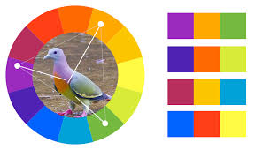 Color Combination Finder Color Theory The Basics Useful Tools And Further Resources