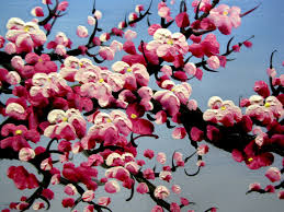 blossom wallpaper widescreen