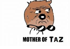 Mother Of Meme - mother of taz meme on me me
