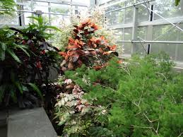 Daniel Stowe Botanical Garden belmont nc u2013 daniel stowe botanical garden ranger annette