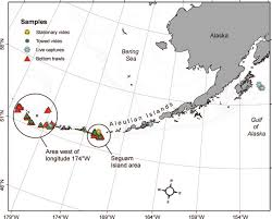map of aleutian islands map showing study locations in the aleutian islands and gulf of