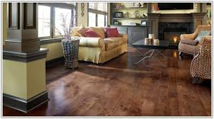 best mop for vinyl floors page best home decorating ideas