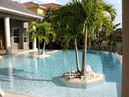 Florida Home Designs Swimming Pool Designs Florida Home Design Image Luxury With