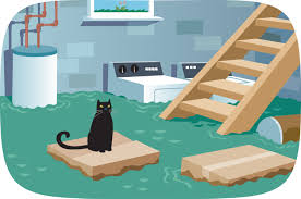 advice for cleaning after floods the statesman examiner