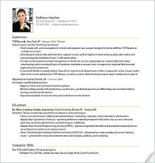 format for professional resume format of a professional resume dadaji us