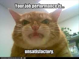 resume templates janitorial supervisor meme doge wallpaper meme 182 best work images on pinterest funny stuff funny photos and