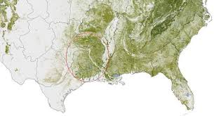 Texas forest images Mapping forest threats american forests jpg