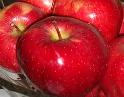 apple red file apple red jpg wikimedia commons