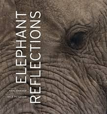 elephant reflections dale peterson hardcover university of