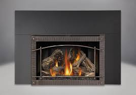 Fireplace Insert Screen by Napoleon Infrared X4 Gas Fireplace Insert Xir4