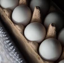 Kaufland Baden Baden Fipronil Belastete Eier In Kaufland Filialen Gefunden Welt