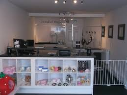 Home Salon Decorating Ideas Risultati Immagini Per Dog Grooming Salon Decorating Ideas