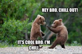 Chill Out Bro Meme - hey bro chill out it s cool bro i m chill chill out bro